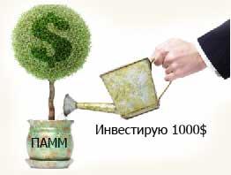 Инвестирование в ПАММ-счета, начинаем эксперимент