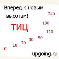 тиц уже 240